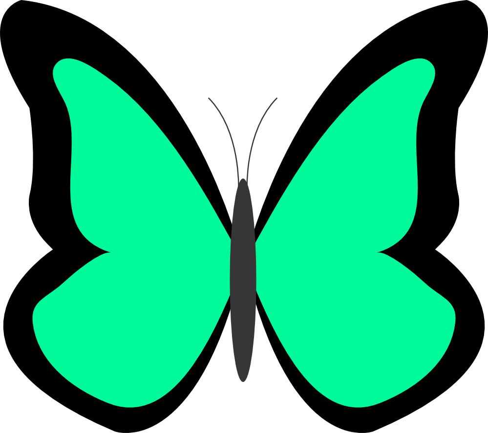 Net panda free images. Cycle clipart butterfly