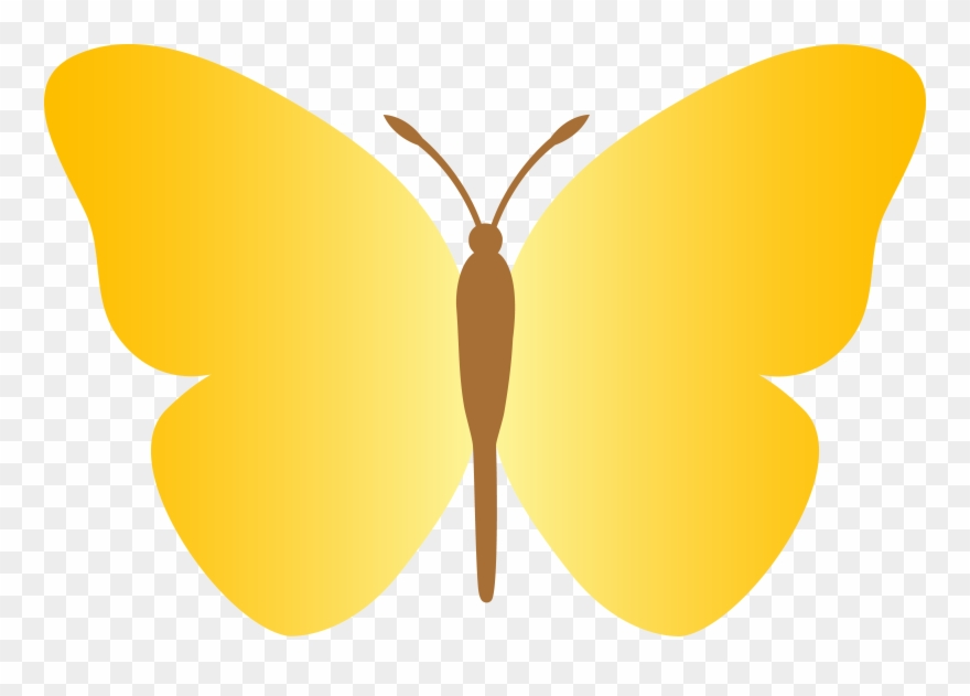 Simple yellow . Clipart butterfly plain