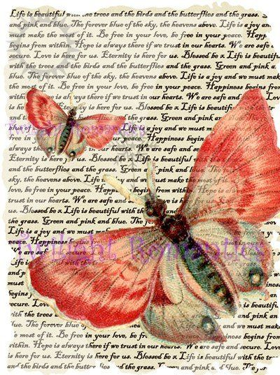 Dusky pink vintage art. Butterfly clipart shabby chic