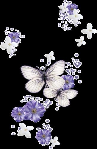 Trouv sur http poussinnette. Butterflies clipart summer flower