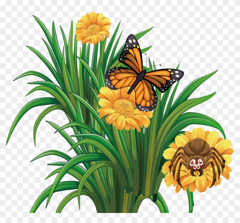 Butterflies clipart summer flower. Monarch butterfly flowers with