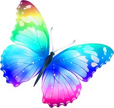 The effect by michelle. Butterfly clipart translucent