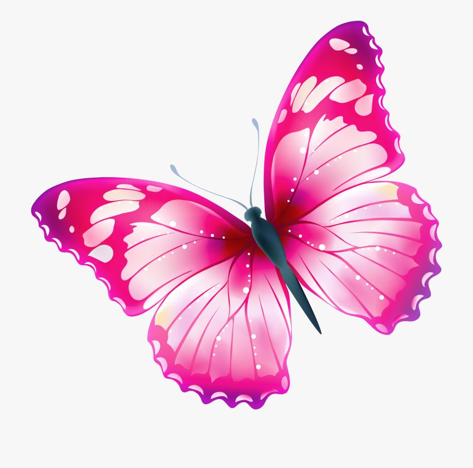 Royalty free download bildergebnis. Clipart butterfly transparent background
