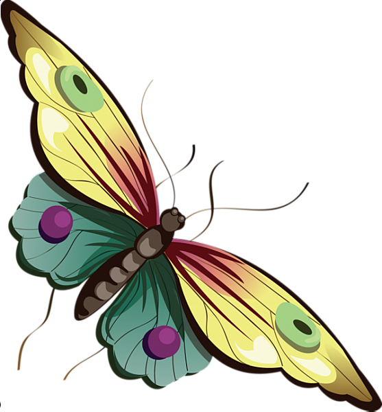 Moth clipart animated. Cartoon yellow and blue