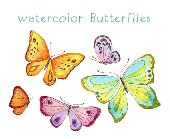 Digital wreath flowers floral. Butterfly clipart watercolor
