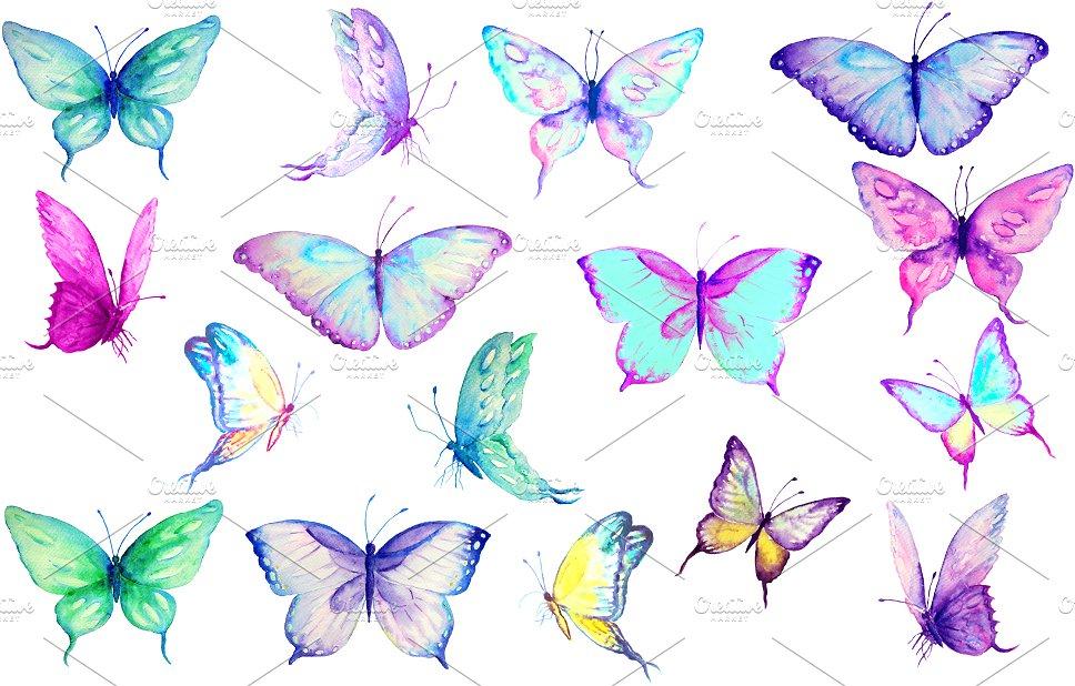Clip art blue butterflies. Butterfly clipart watercolor