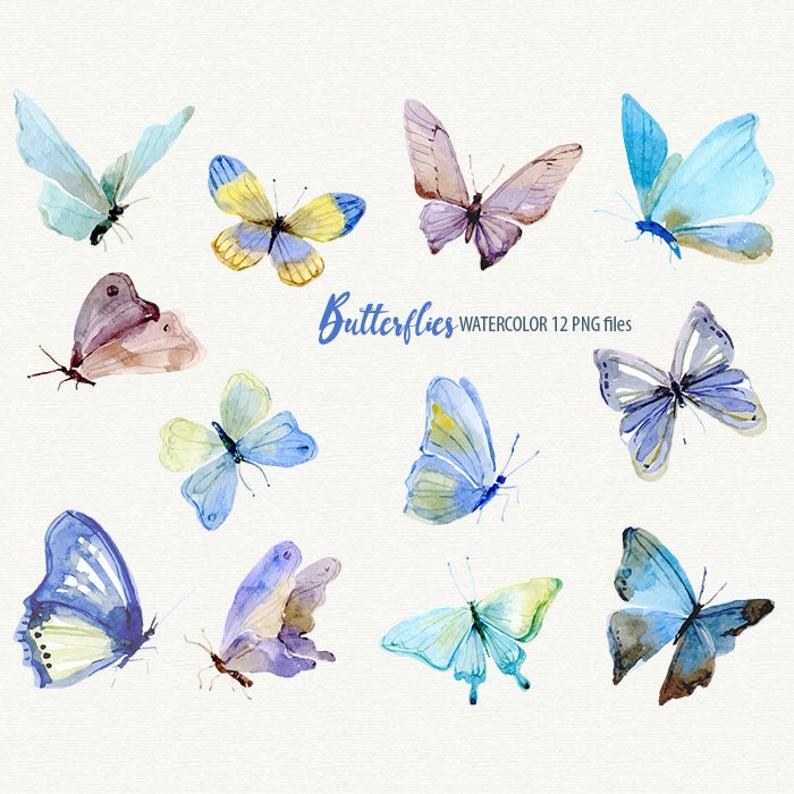 Butterflies . Butterfly clipart watercolor