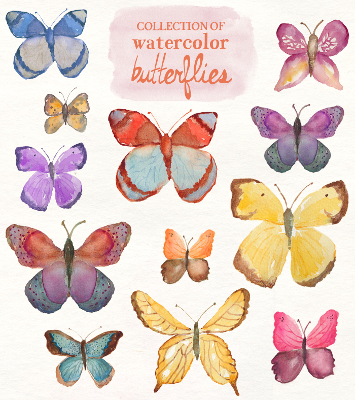 5 clipart butterfly. Watercolor clip art