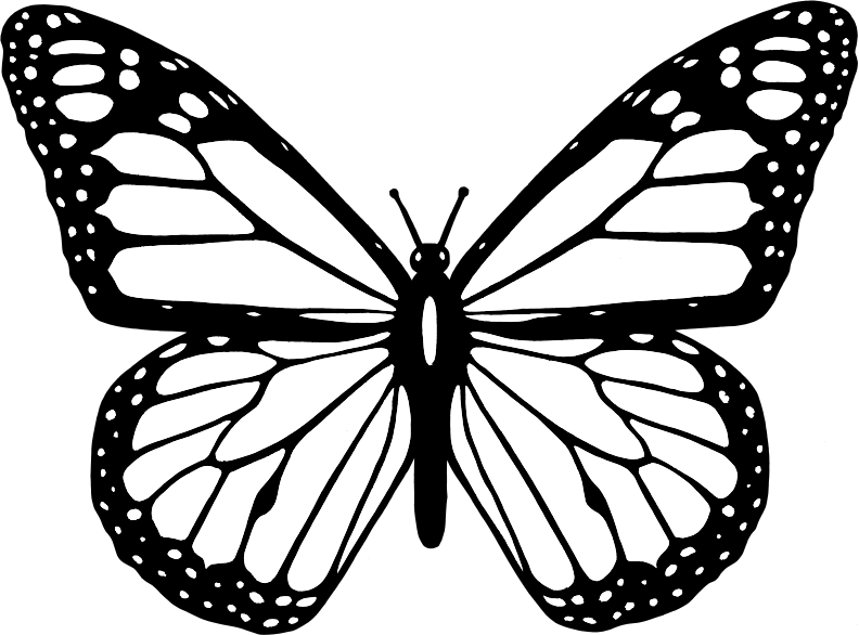 Clipart butterfly outline. Black and white medium