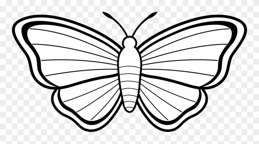 Clipart butterfly colour. Black and white clip