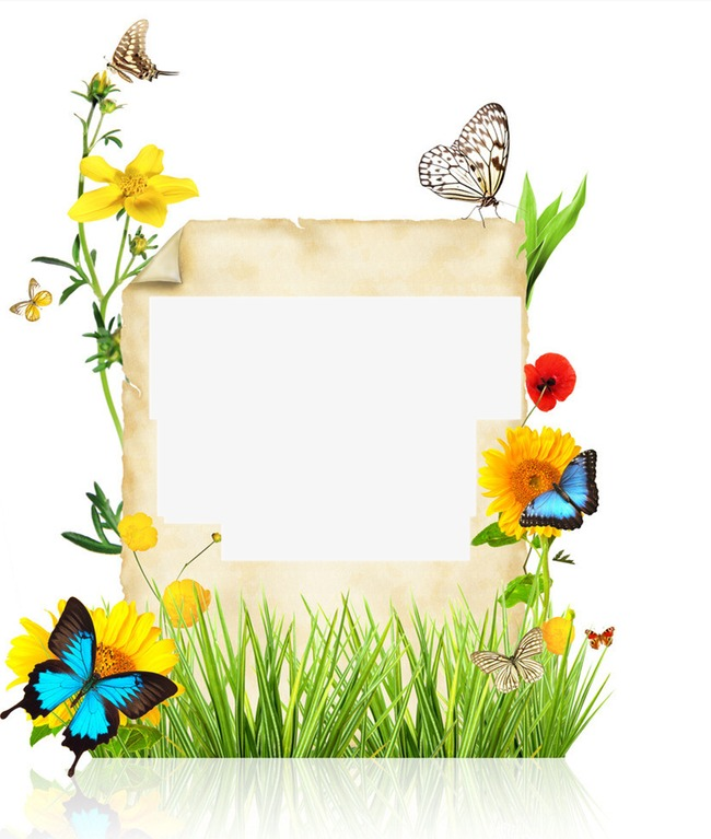 Flower border good looking. Butterfly clipart picture frame