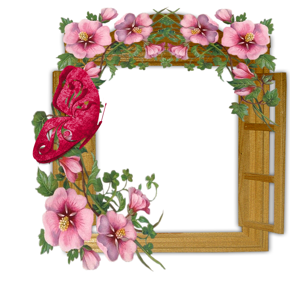 Butterfly clipart picture frame. Wooden winow with flowers