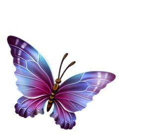 best mariposas images. Butterfly clipart plain