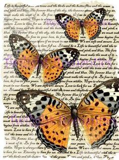 Aqua green vintage art. Butterfly clipart shabby chic