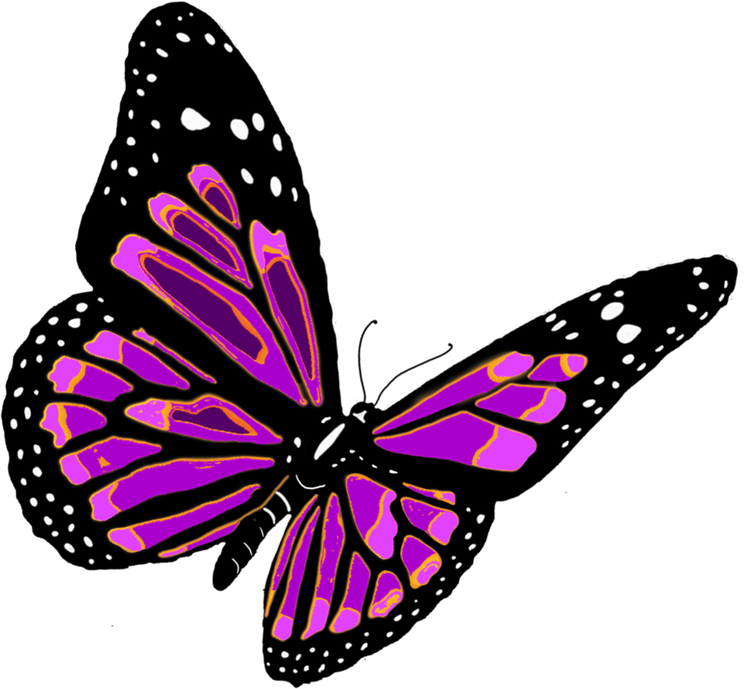 Insect clipart colorful flying butterfly. Png image free picture