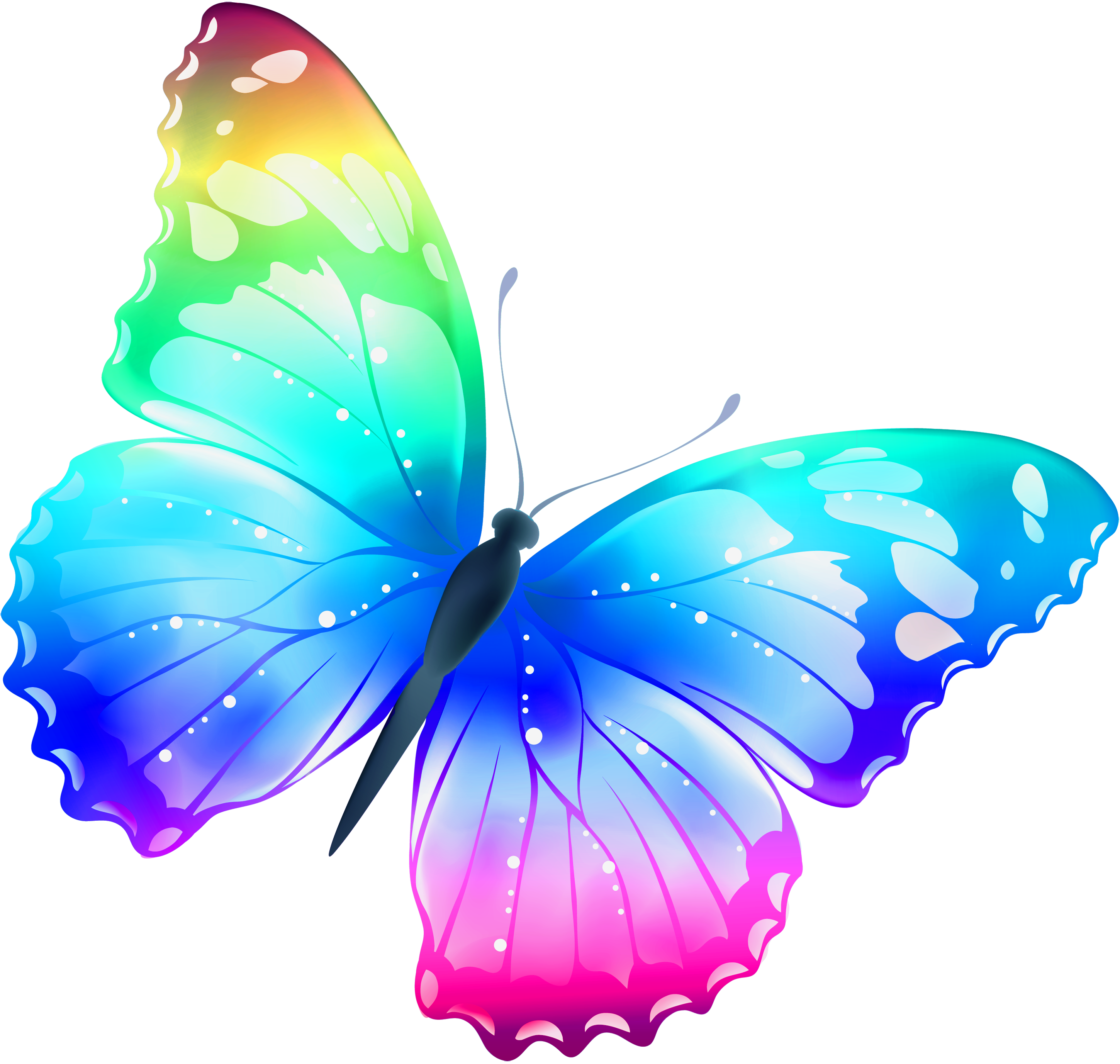 Worm clipart butterfly. Large transparent multi color