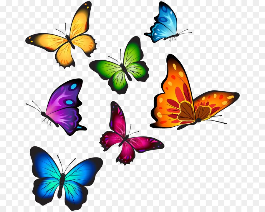 Butterfly clipart watercolor. T shirt clip art
