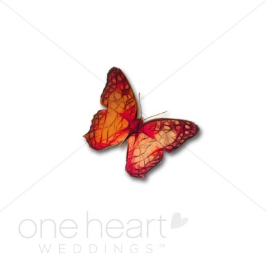 Colorful bird and. Butterfly clipart wedding