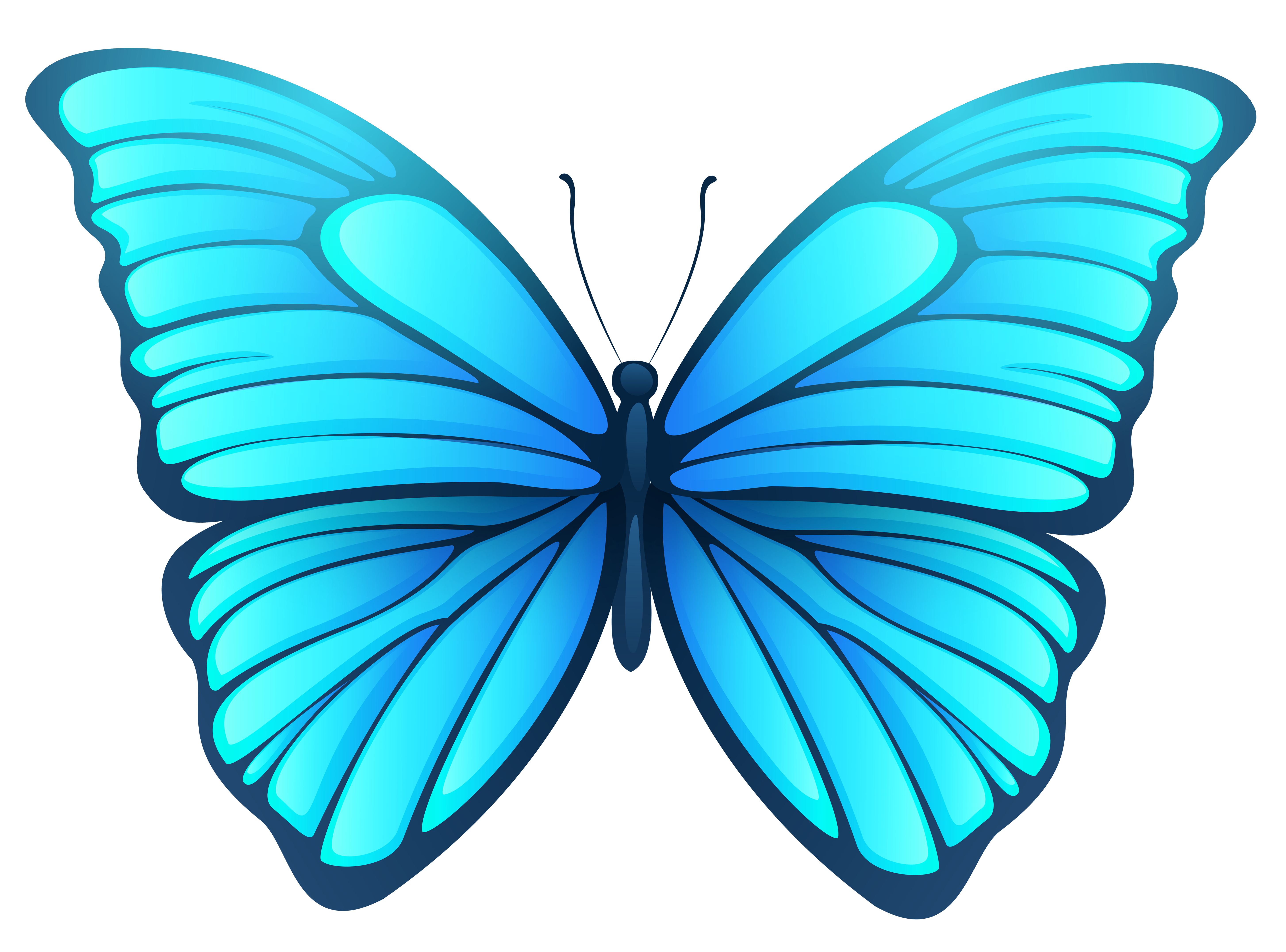 Butterfly png images. Image gallery yopriceville high