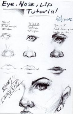 Button clipart button nose. How to draw noses