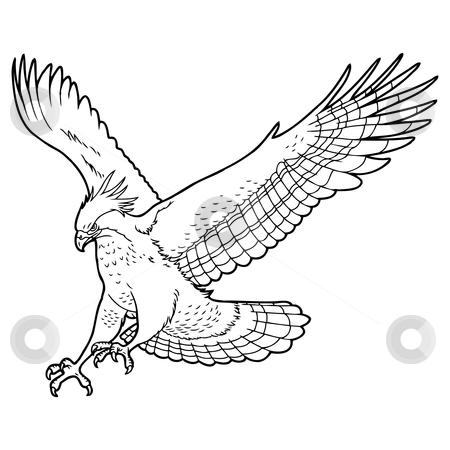 Eagle stock vector. Button clipart sketch