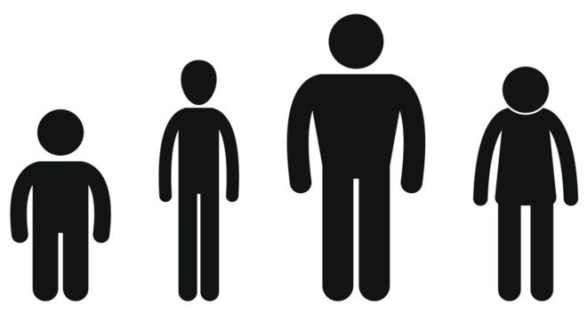 Dutch men revealed as. Buy clipart average person