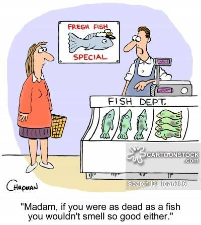 Fish cartoons and comics. Buy clipart shop counter