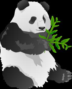 Bear clip art at. C clipart panda