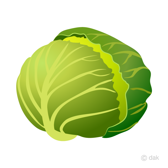 Free picture illustoon . Cabbage clipart