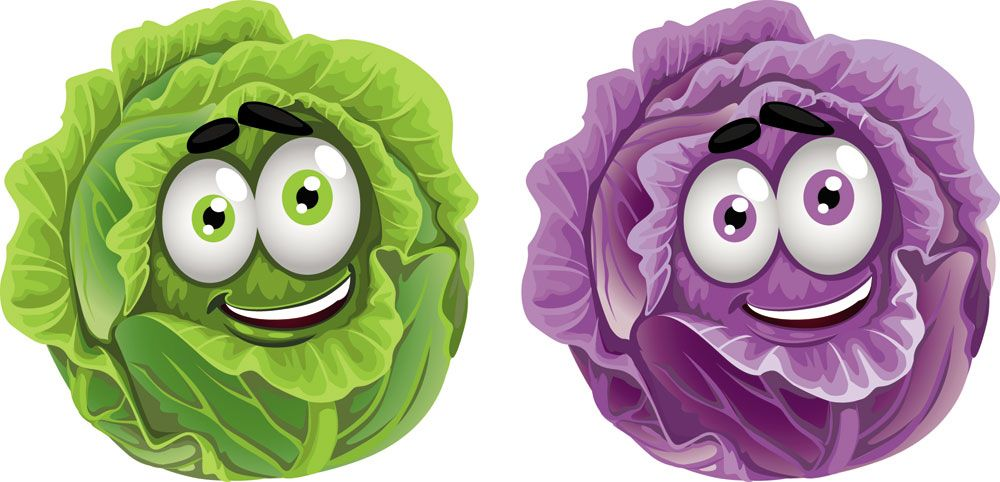 Cabbage clipart animated. Cartoon fruit and vegetable