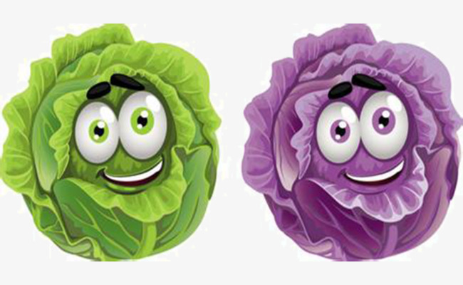 Cartoon green png image. Cabbage clipart animated