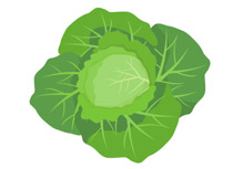 Cabbage clipart animated. Free vegetables clip art