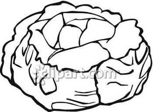 Cabbage clipart black and white. Royalty free picture