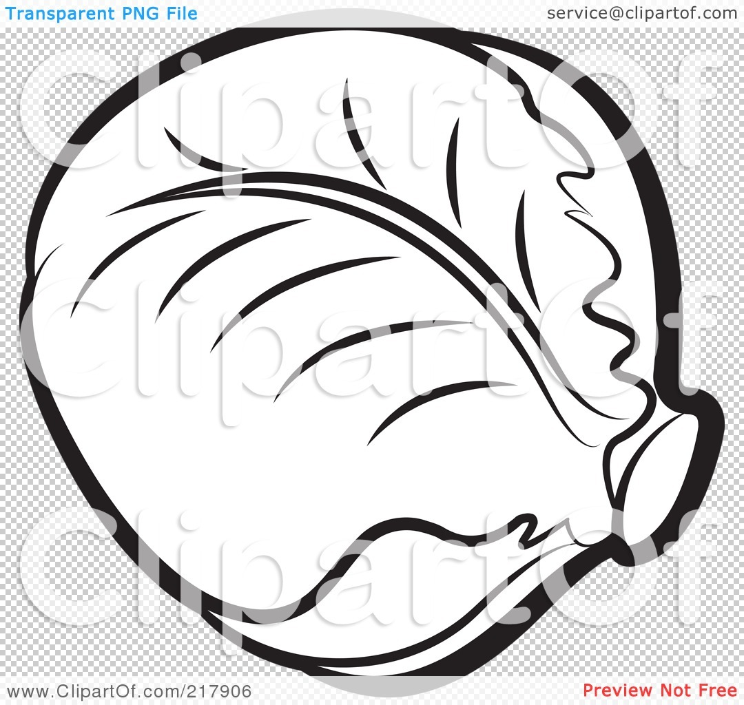Letters format outline pencil. Cabbage clipart black and white