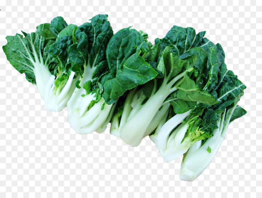 Napa chinese vegetable food. Cabbage clipart bok choy