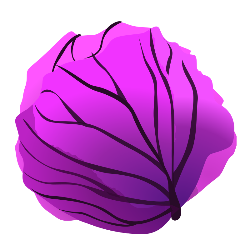 Png images transparent free. Cabbage clipart cabage