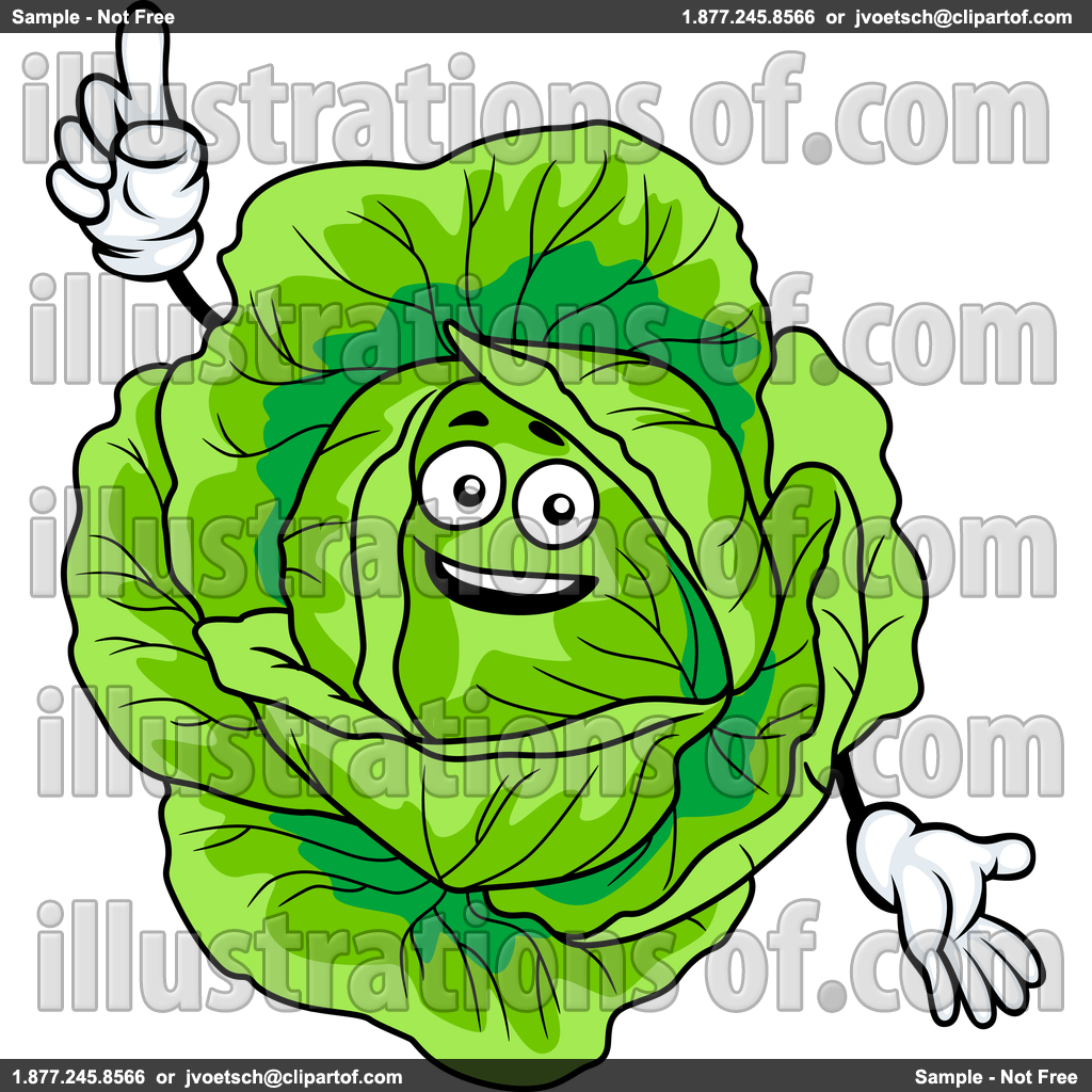 cabbage clipart cabage