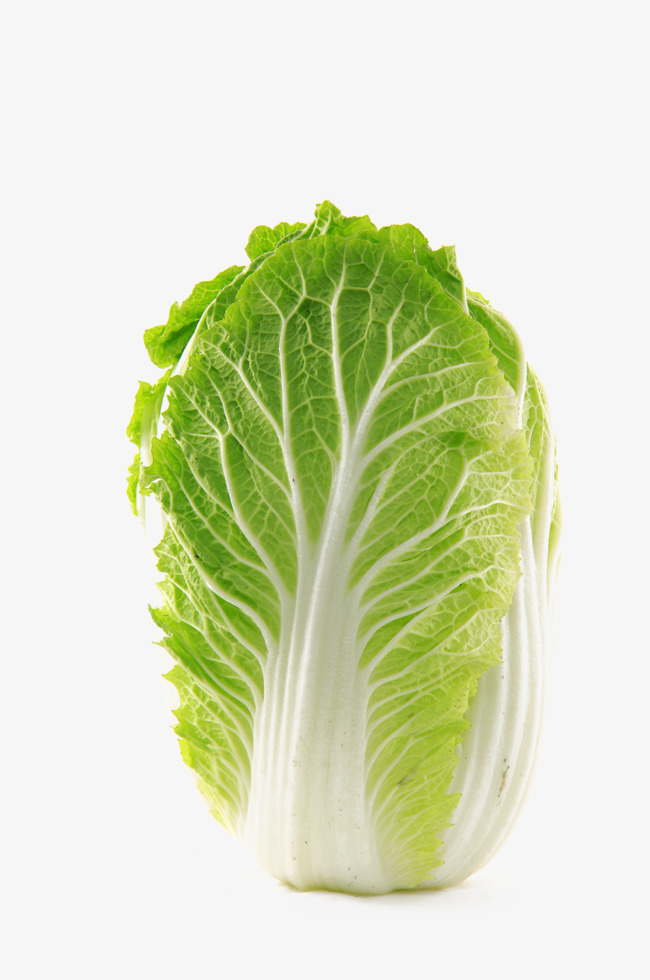 Fig vegetables png image. Cabbage clipart cabbage chinese