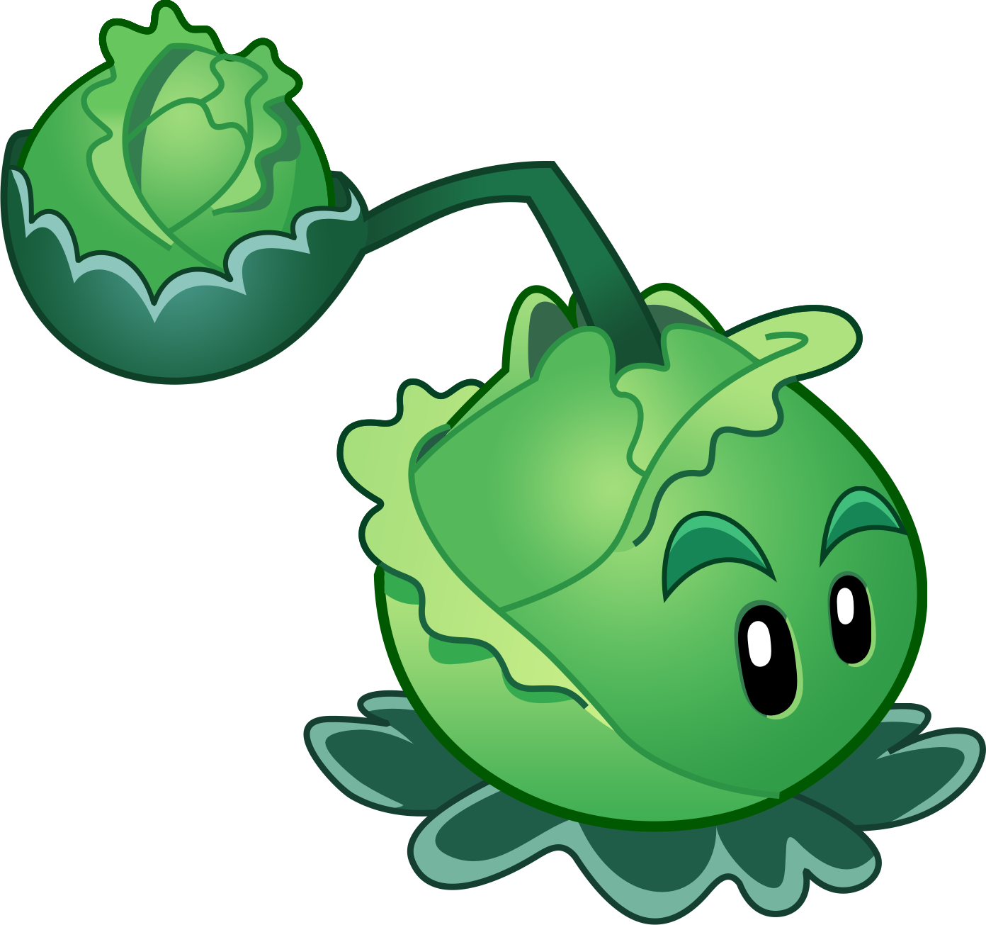 Cabbage clipart cabbage plant. Image pult png plants