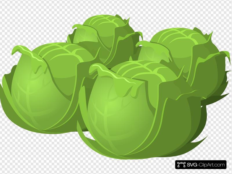 Cabbage clipart clip art. Icon and svg