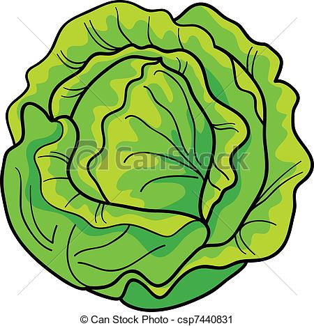 Cabbage clipart clip art. Look at images clipartlook