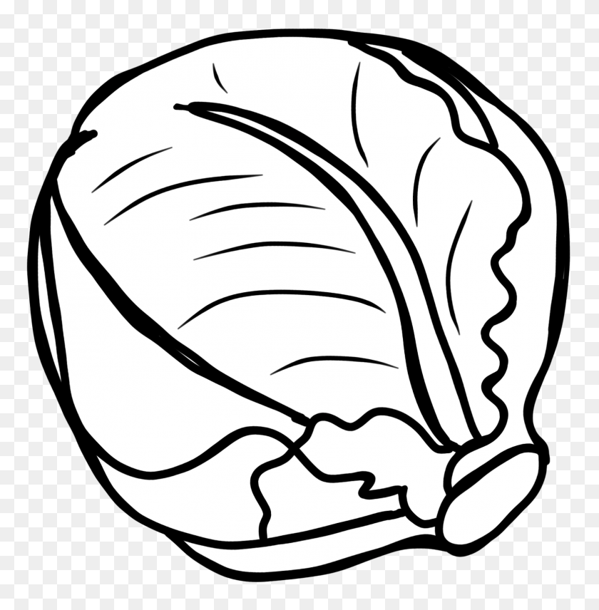 Cabbage clipart coloring. Line art white head