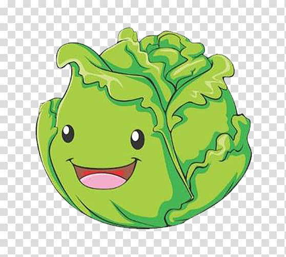 Cartoon vegetable illustration . Cabbage clipart cute