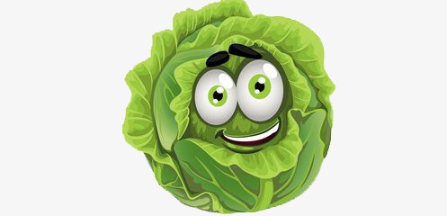 Green cartoon png image. Cabbage clipart cute