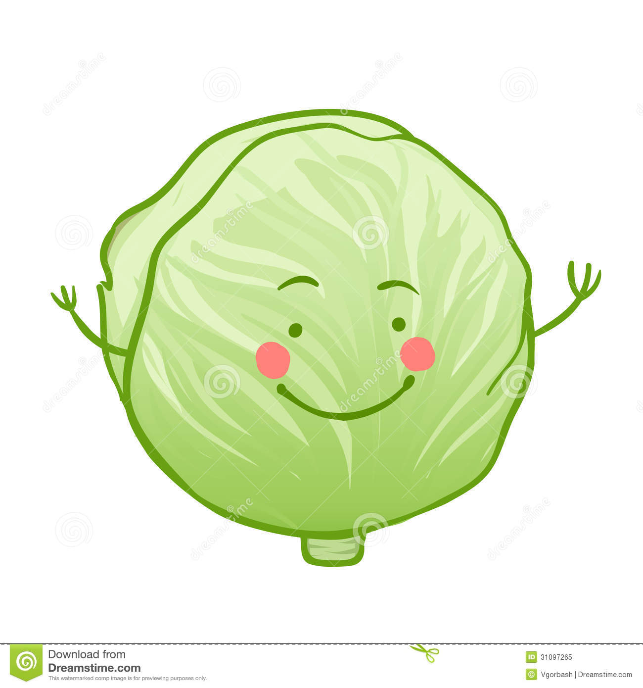 cabbage clipart cute