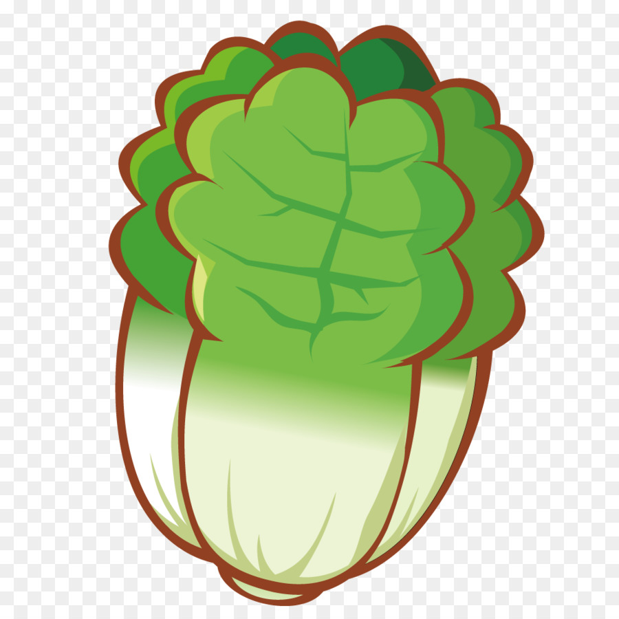 Cartoon vegetable lifelike png. Cabbage clipart drawing