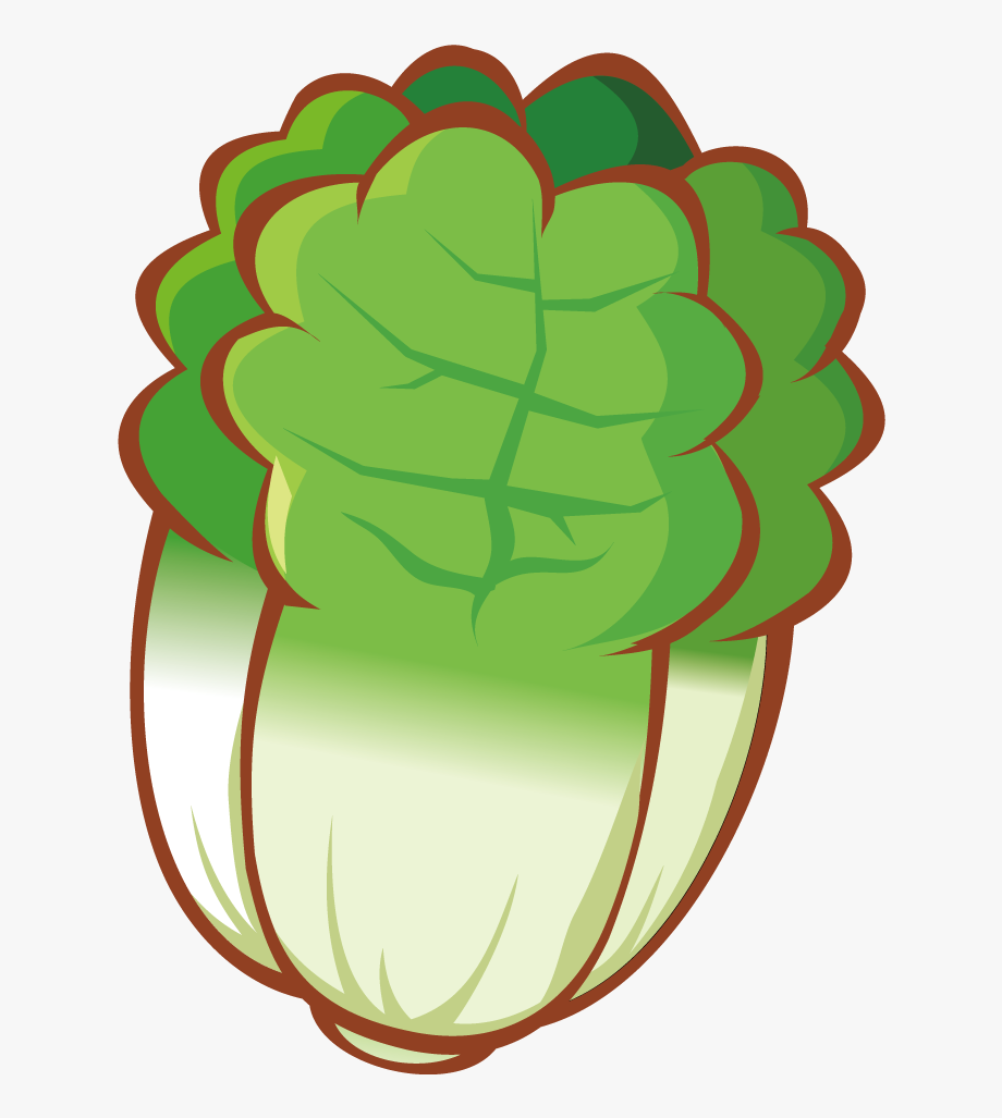 Cabbage clipart drawing. Banner freeuse library inside