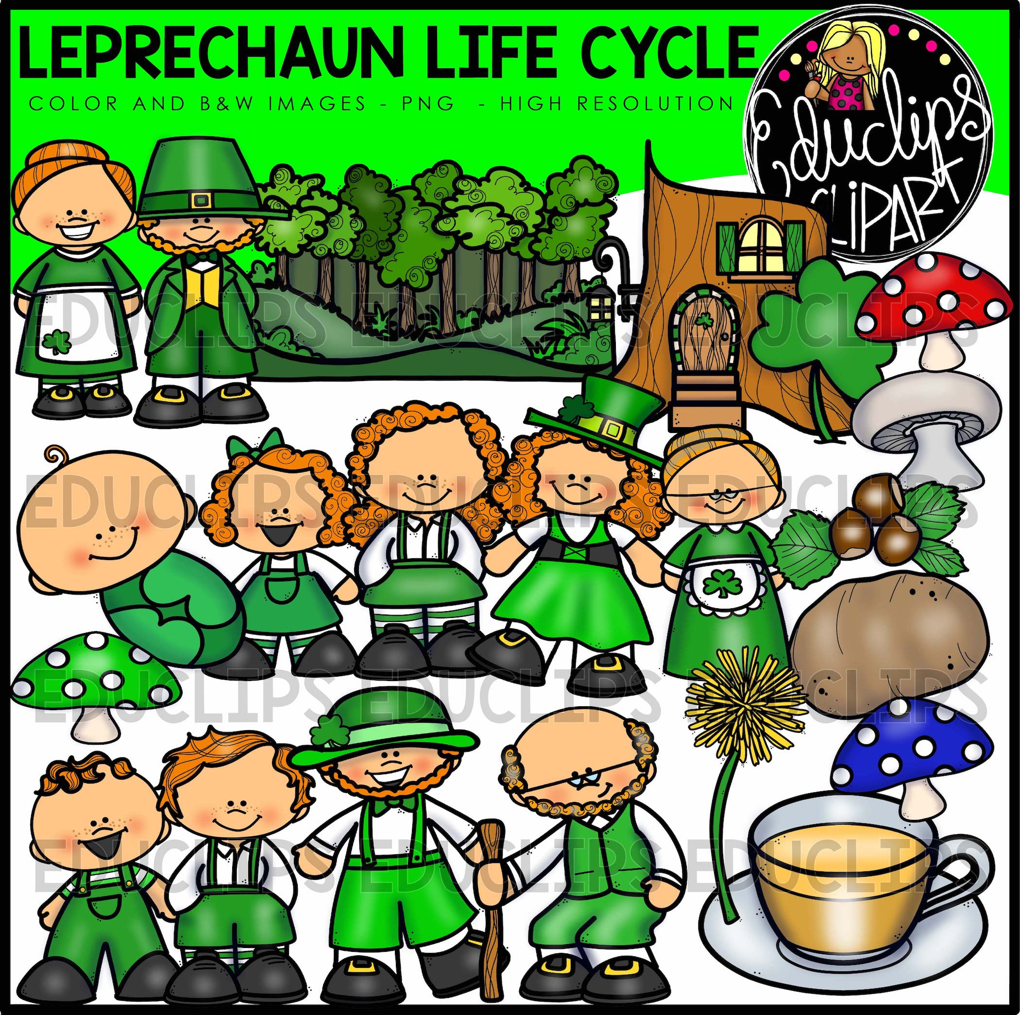 Cabbage clipart educlips. St patrick s day