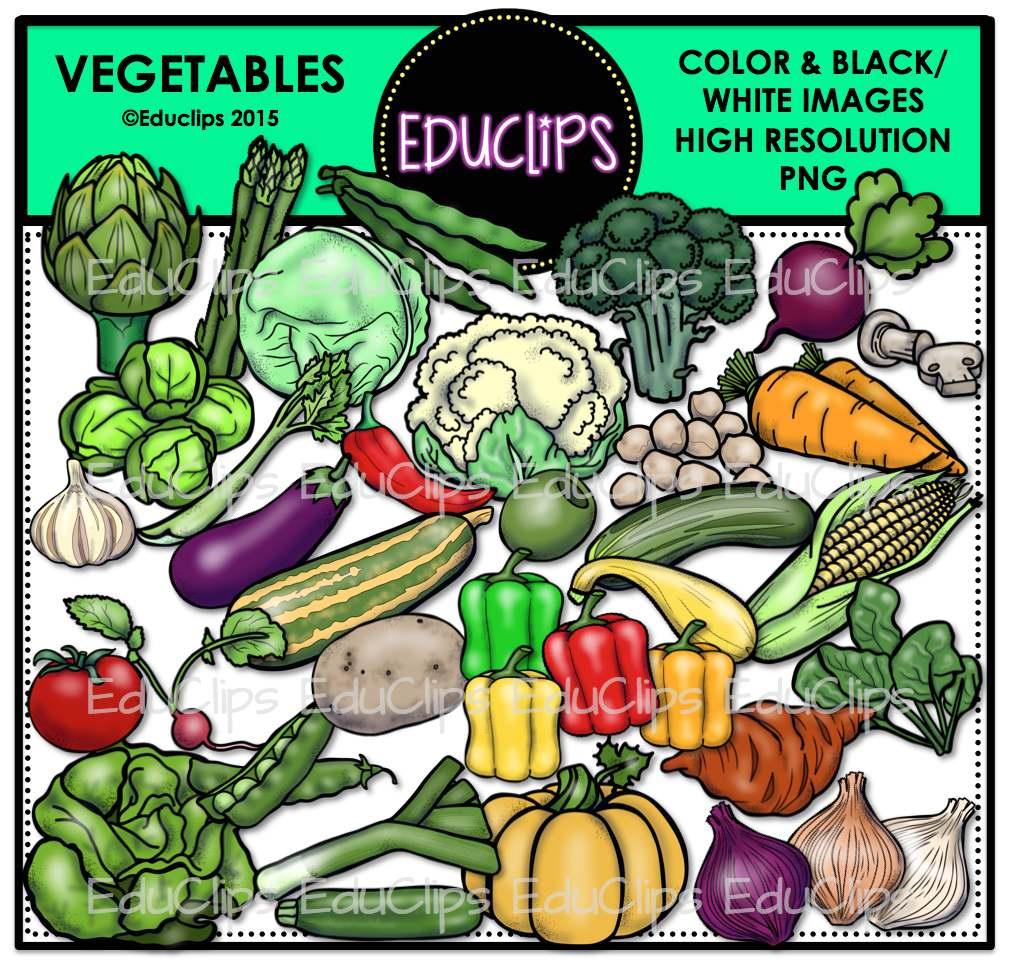 Cabbage clipart educlips. Vegetables clip art bundle