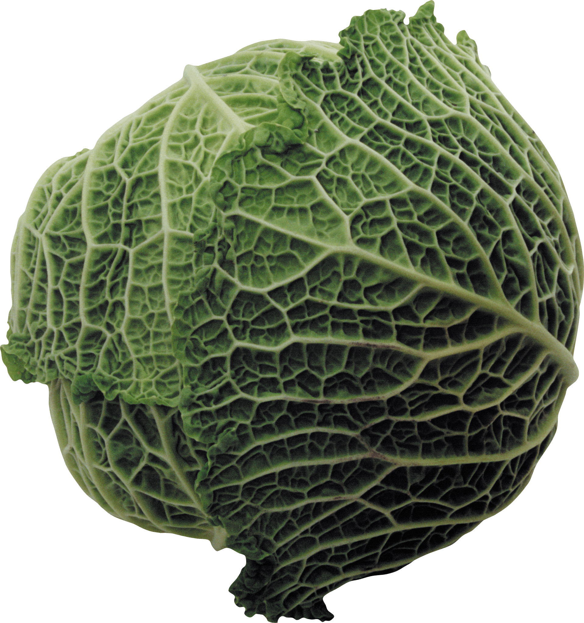 Vegetables clipart cabbage. Green transparent png stickpng